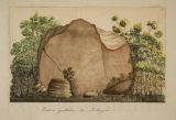Piedra pintada de Saboyá