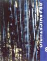 Imagen de apoyo de  Guía de estudio núm. 8. Graphicstudio: el campo expandido de la gráfica